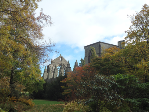Holyrood Garden.png