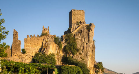 The Kingdom of Vidara