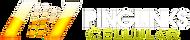 Pinglinks Main Logo Text