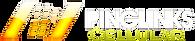 Pinglinks Main Logo Large