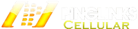 Pinglinks Main Logo Large
