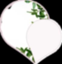 Logo Cajole 3.png