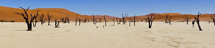 Deadvlei - Namibia Safaris