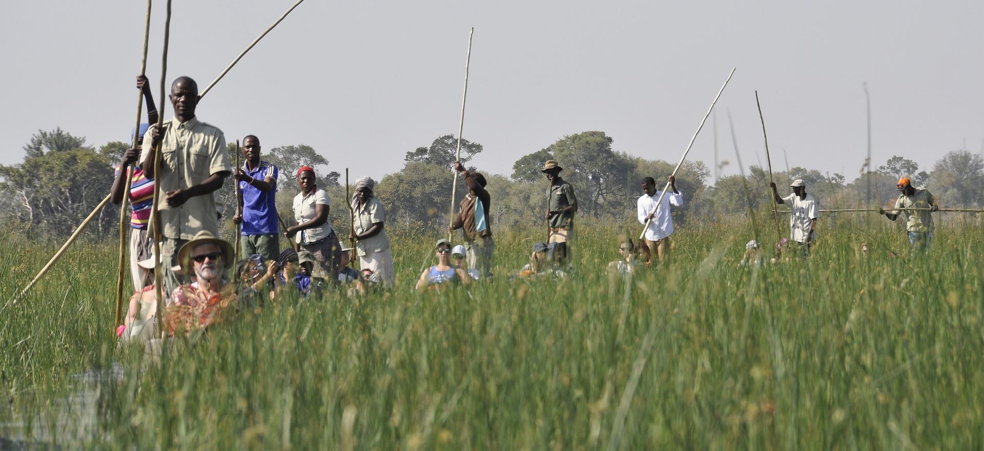 Okavango Desert