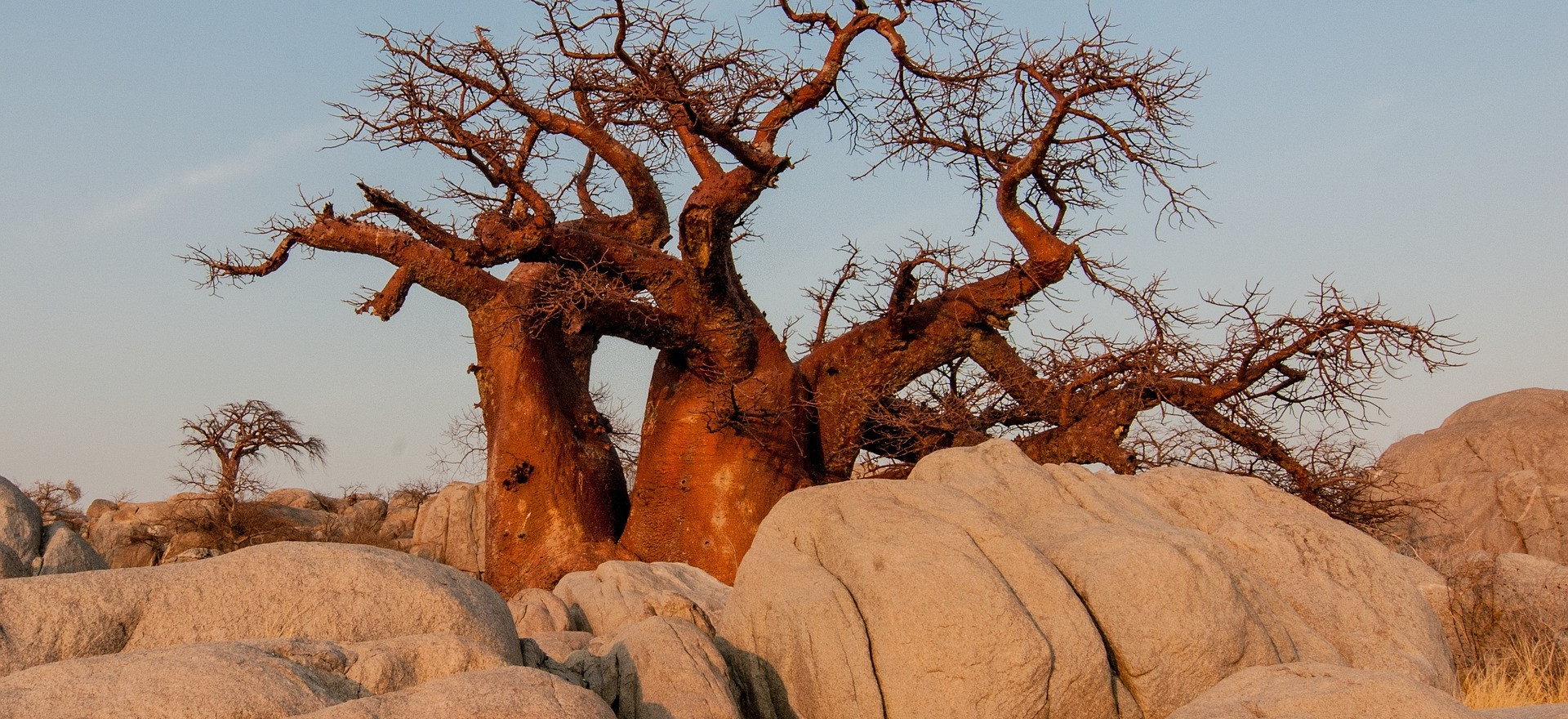 Botswana - image Herbert Bock