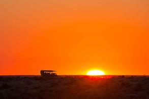 Okaukuejo Sunset