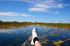 Mokoro excursion in the Okavango Delta