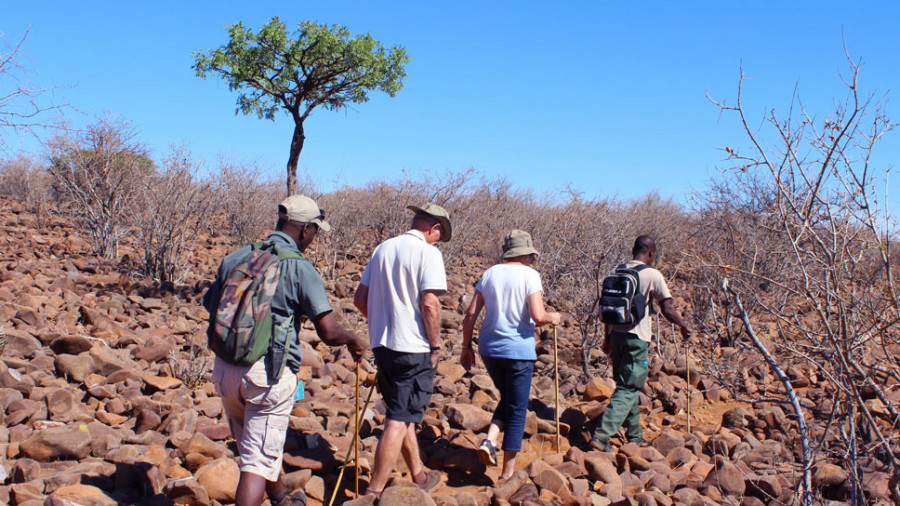 Moringa Guided Walk