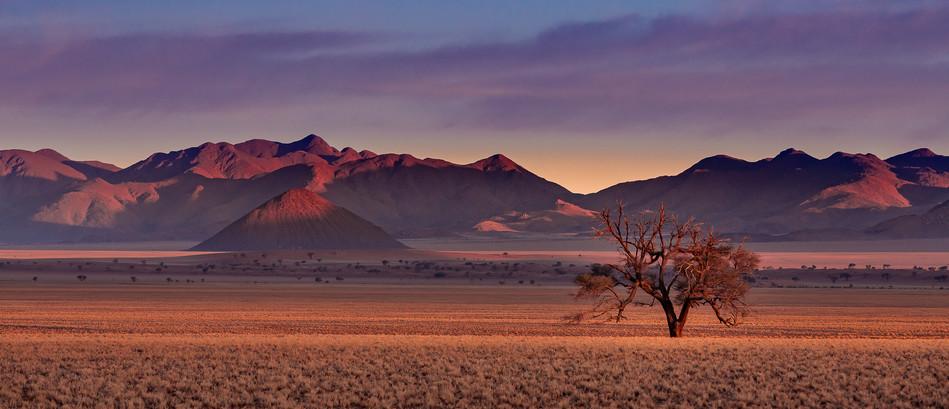 Namib at Sunrise