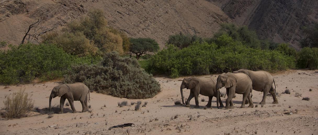 Damaraland - image Lucy Beveridge