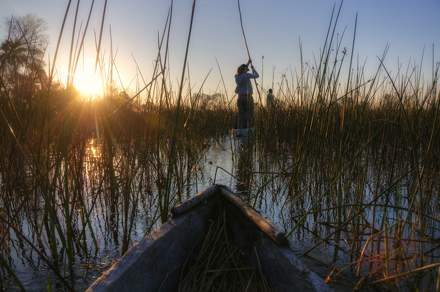 Mokoro Excursion - Okavango Delta