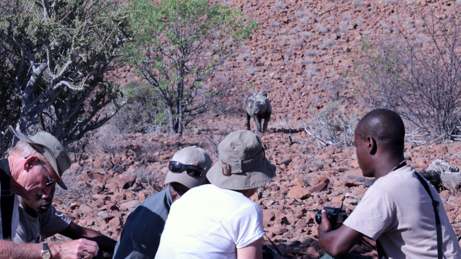 Grootberg Rhino Tracking
