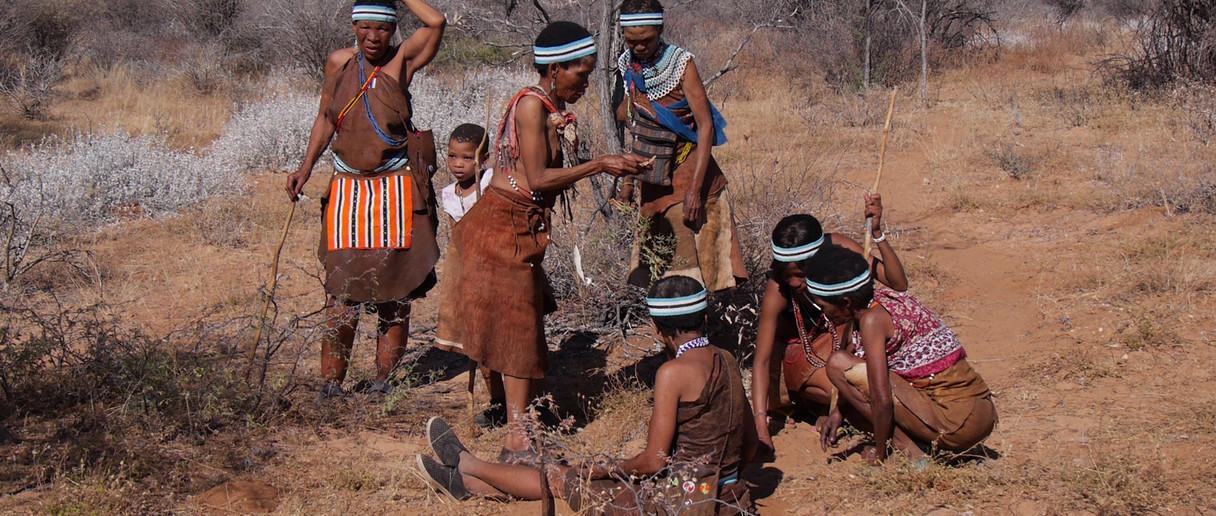 Central Kalahari - image Herbert Bock