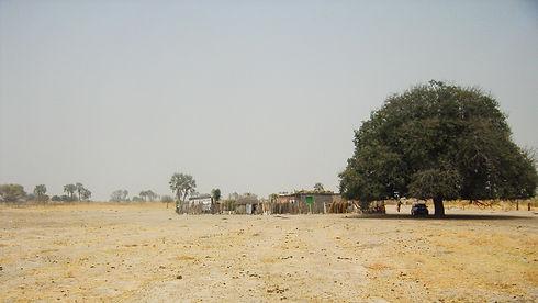 Kraal in Ovamboland