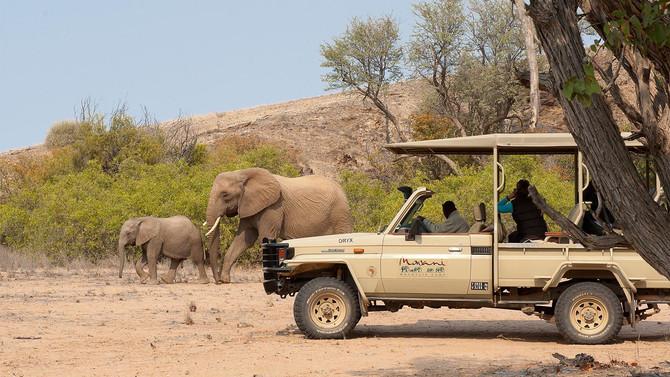Mowani Elephant Drive.jpg