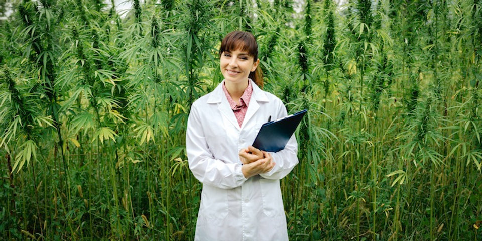 Doctors-for-Cannabis-Regulations-Forms-t