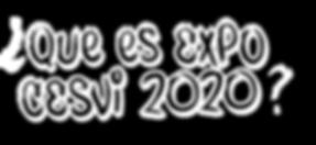 que es expo cesvi-02.png