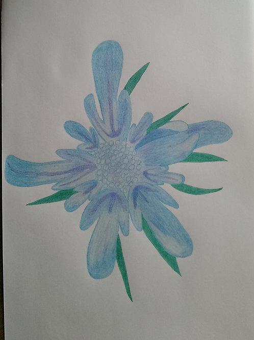 Drawing 10/16