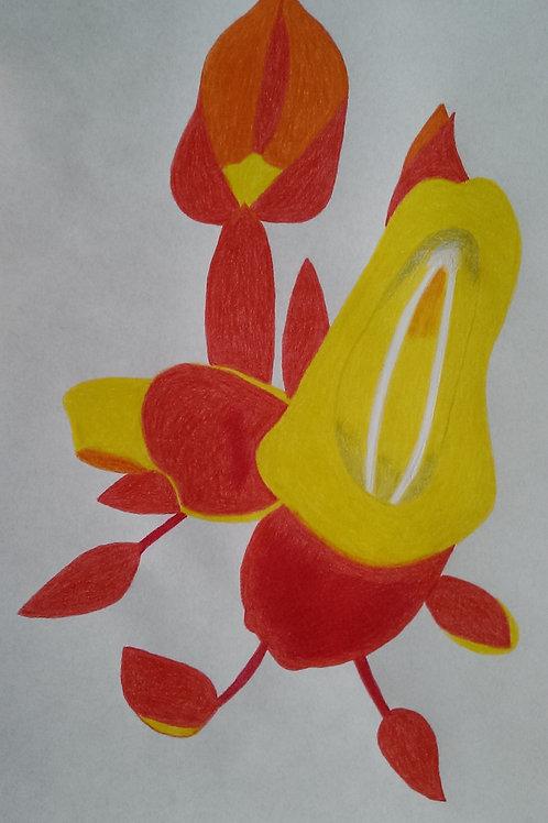 Drawing 1/16