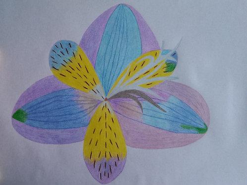 Drawing 4/16