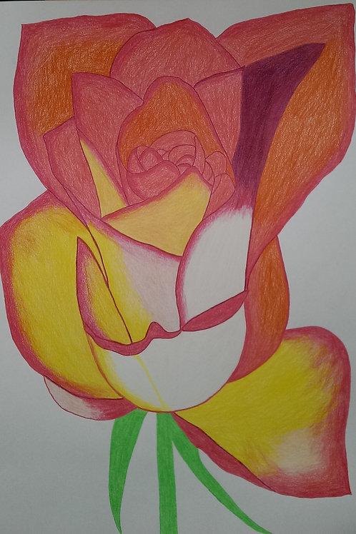 Drawing 61/16