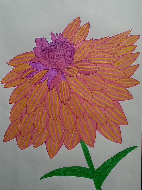 Drawing 14/2017