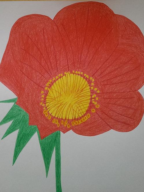 Drawing 56/16