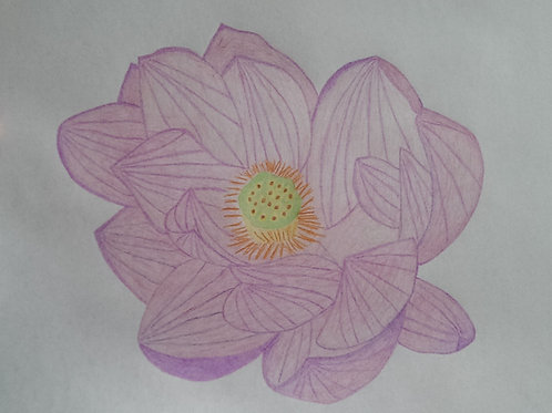 Drawing 5/16