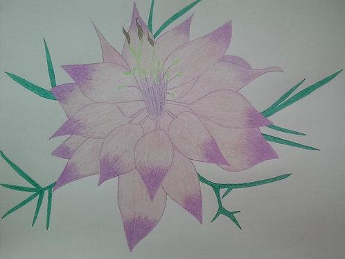 Drawing 11/16