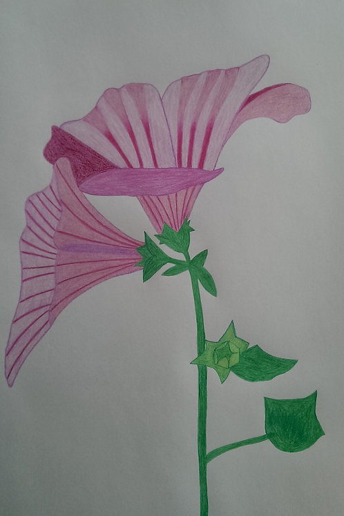 Drawing 20/16