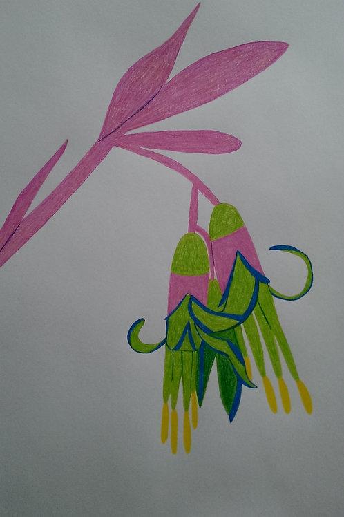 Drawing 14/16