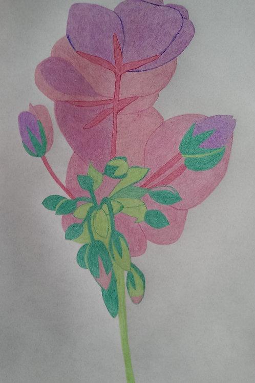 Drawing 3/16