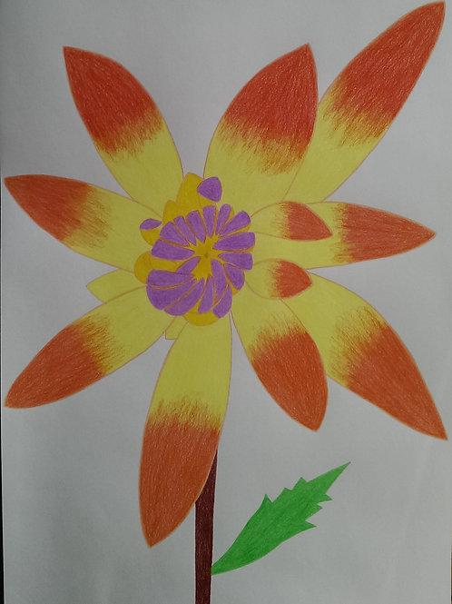 Drawing 60/16