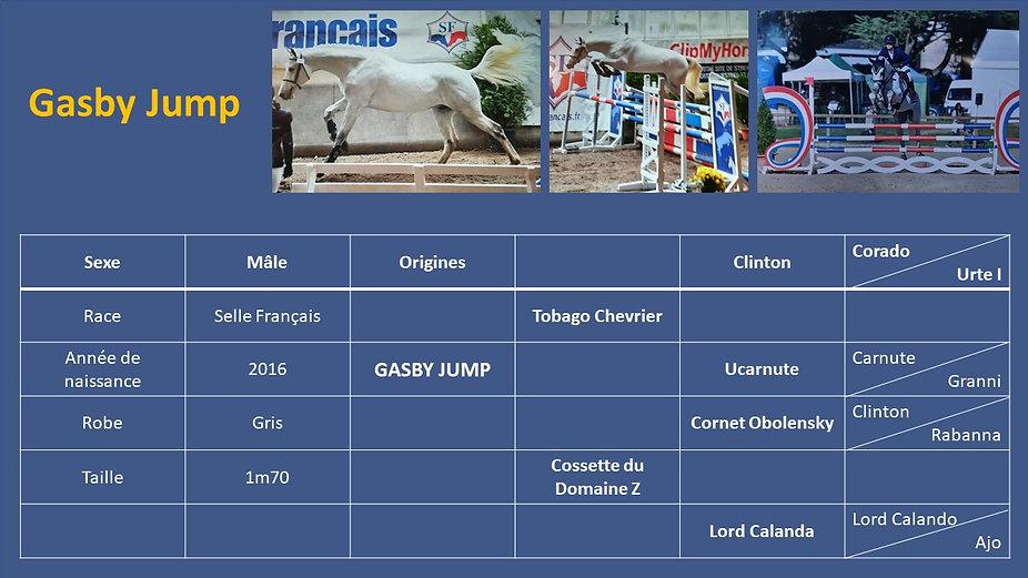 Gasby Jump.jpg