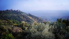 Celebrate Autumn in Istria