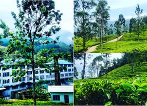 A week touring Southern Sri Lanka