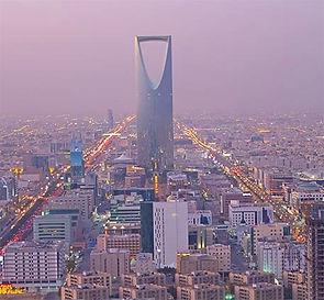 Fast Saudi Visa
