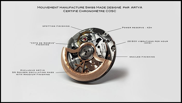Sketch witl all the parts of the ArtyA COSC Movement