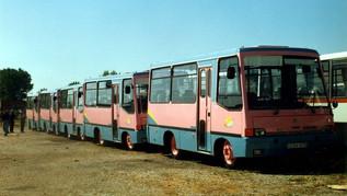 Kisbusz-közlekedés Szegeden?