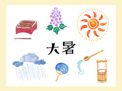 coyoriマガジン「大暑の過ごし方」