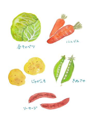 coyori インスタグラム連載マガジン 春野菜