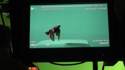 TAKEOFF BTS INDUSTRIAL VIDEO PRODUCTION.JPG