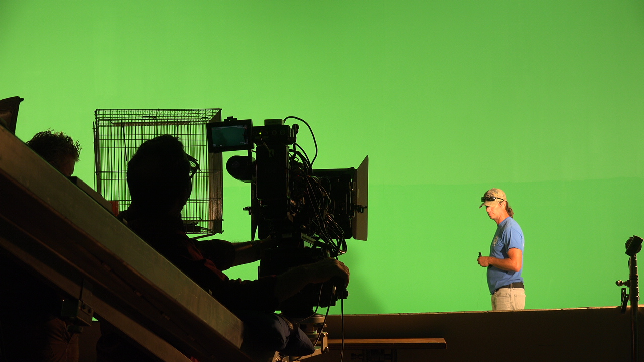 BIRD RELEASED BTS INDUSTRIAL VIDEO PRODUCTION.JPG