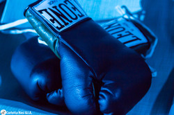 Boxeo Literario