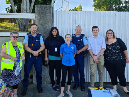 Making Napier homes 'safe as houses'