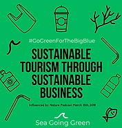Sustainable tourism with consultancy company Sea Going Green