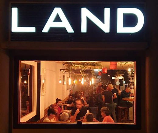 land1_edited.jpg