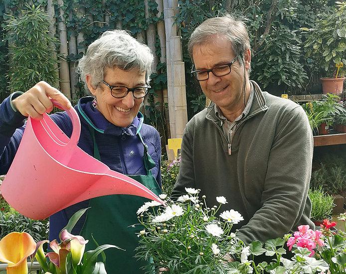 Jardineria Navarro Puiggrós, floristeria