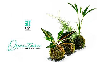 Orientaru by Git, espai creatiu