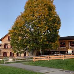Stelserhof